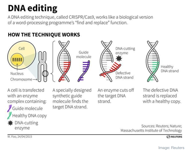 DNA editing, genomics